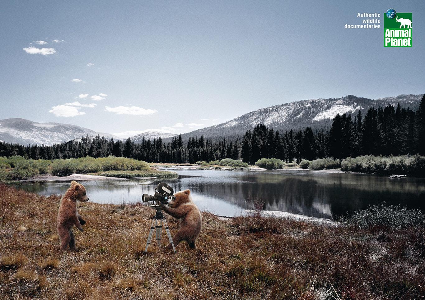 2-Animal-Planet-Cameramanimals-Bear